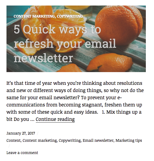 Email newsletter blog example